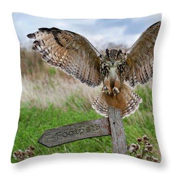 Eagle Owl On Signpost Throw Pillow