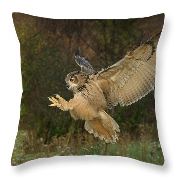 Eagle-owl Wings Back Throw Pillow