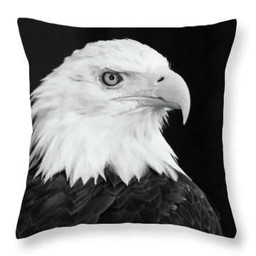 Eagle Portrait Special  Throw Pillow
