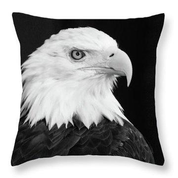Eagle Portrait Special  Throw Pillow