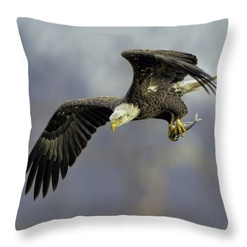 Eagle Power Dive Throw Pillow