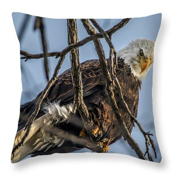 Eagle Power Throw Pillow