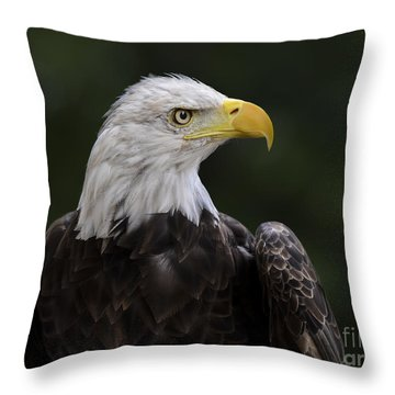 Eagle Profile 2 Throw Pillow