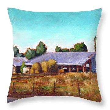Eagle Road Barn Throw Pillow
