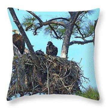 Throw Pillow featuring the photograph Eagle Series Baby by Deborah Benoit