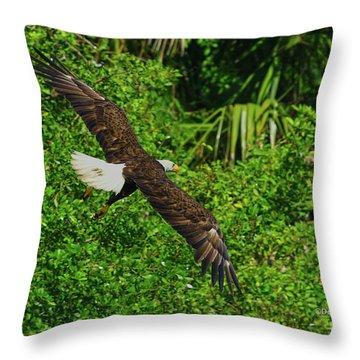 Throw Pillow featuring the photograph Eagle Series Flight by Deborah Benoit