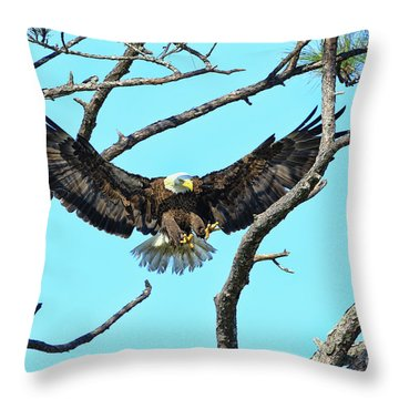 Throw Pillow featuring the photograph Eagle Series Wings by Deborah Benoit