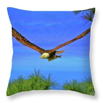 Throw Pillow featuring the photograph Eagle Series Through The Trees by Deborah Benoit