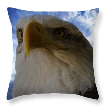 Eagle Throw Pillow by Sherman Perry