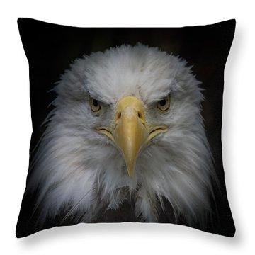 Eagle Stare Throw Pillow