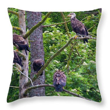 Eagle Tree Throw Pillow by Mike  Dawson
