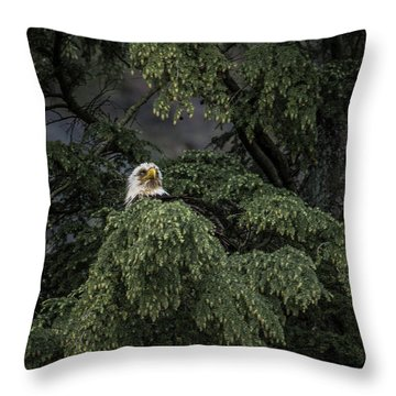 Throw Pillow featuring the photograph Eagle Tree by Timothy Latta