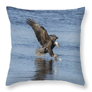 Eagle Triptych 2016-2 Throw Pillow