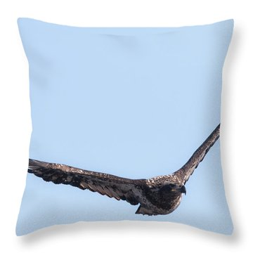 Eagle Watch 2017 Throw Pillow by Ricky L Jones