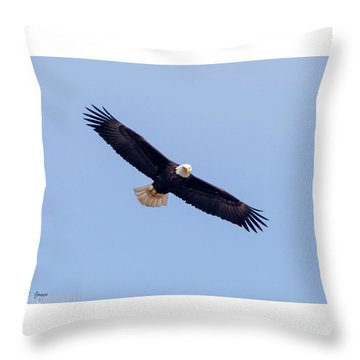 Throw Pillow featuring the photograph Eagle Watch 2018 by Ricky L Jones