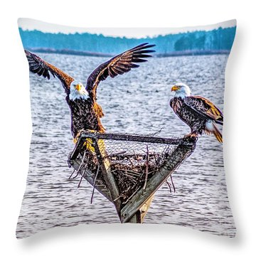 Throw Pillow featuring the photograph Eagles In Blackwater Refuge by Nick Zelinsky