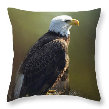 Eagles Rest Ministries Throw Pillow by Carla Parris