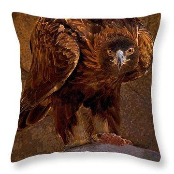 Eagle's Stare Throw Pillow