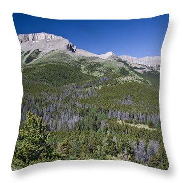 Ear Mountain, Montana Throw Pillow
