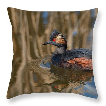 Eared Grebe Throw Pillow