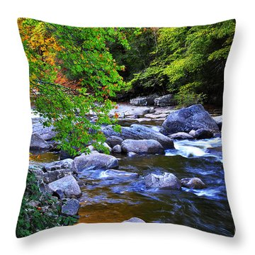 Early Autumn Along Williams River Throw Pillow by Thomas R Fletcher