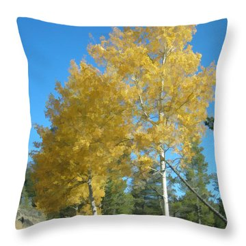 Early Autumn Aspens Throw Pillow