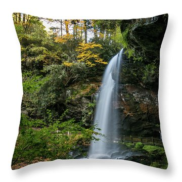 Early Autumn At Dry Falls Throw Pillow