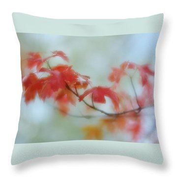 Throw Pillow featuring the photograph Early Autumn by Diane Alexander