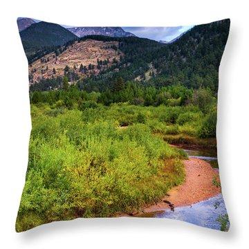 Throw Pillow featuring the photograph Early Autumn In Colorado by John De Bord