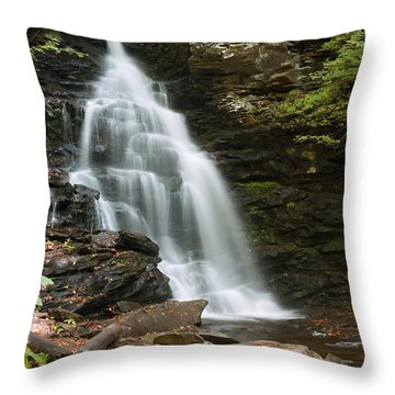 Early Autumn Morning Below Ozone Falls Throw Pillow