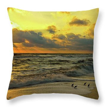 Early Bird Special Throw Pillow