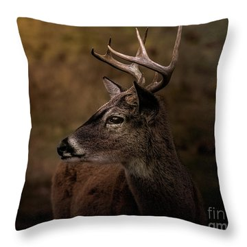 Early Buck Throw Pillow by Robert Frederick
