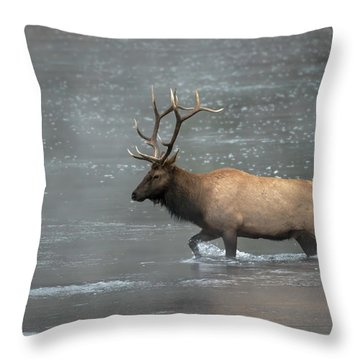 Early Crossing Throw Pillow