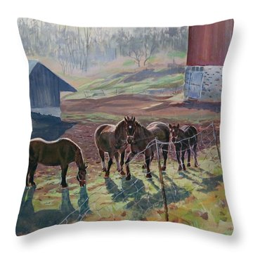 Early December At The Farm Throw Pillow by David Gilmore