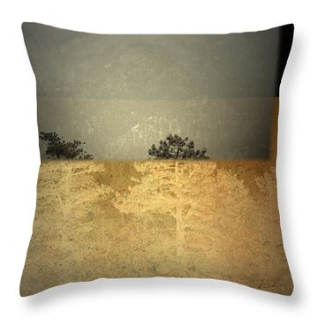 Throw Pillow featuring the photograph Early Elevation  by Mark Ross