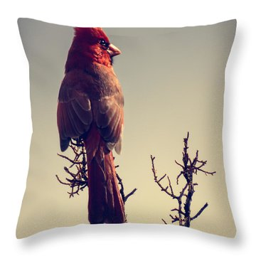 Early Evening Sentinel Throw Pillow