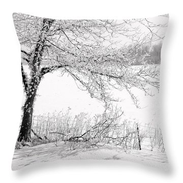 Early Frost Throw Pillow