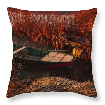 Early In The Morning Throw Pillow