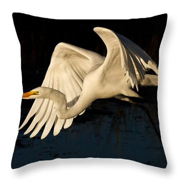 Early Light Egret Throw Pillow by Lamarre Labadie