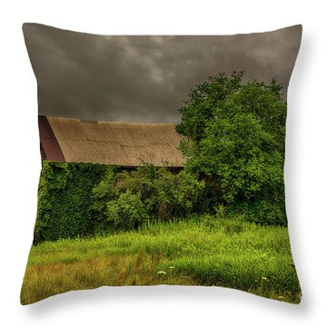Early Monring Rain Throw Pillow