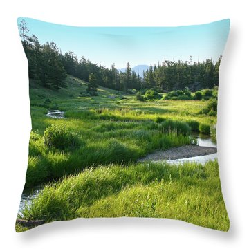 Throw Pillow featuring the photograph Early Morning Along The Stream by Marie Leslie