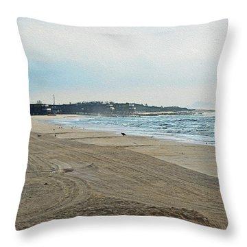 Early Morning Beach Silver Gull Club Throw Pillow