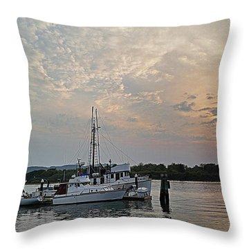 Early Morning Calm Throw Pillow