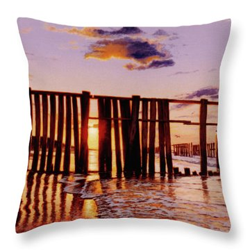 Early Morning Contrasts Throw Pillow