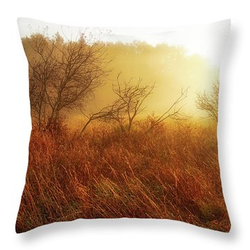 Early Morning Country Throw Pillow