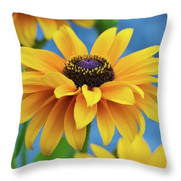 Early Morning Delight Throw Pillow by Randy Wood