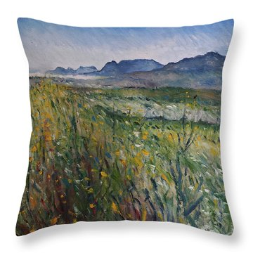 Early Morning Fog In The Foothills Of The Overberg Range Of Mountains Near Heidelberg South Africa. Throw Pillow by Enver Larney