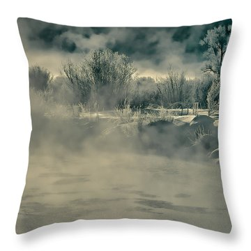 Throw Pillow featuring the photograph Early Morning Frost On The River by Don Schwartz