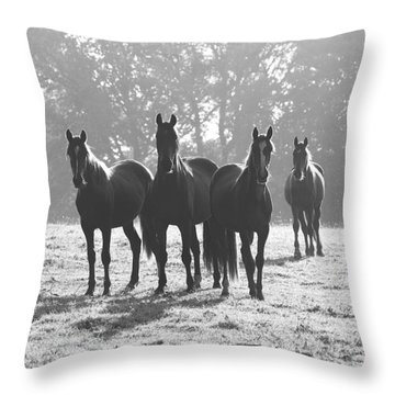 Early Morning Horses Throw Pillow by Hazy Apple