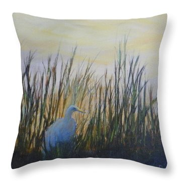 Early Morning In Florida Throw Pillow